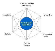 Acceptatie en commitment theorie